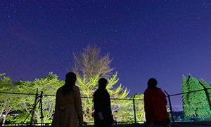 星空観測体験