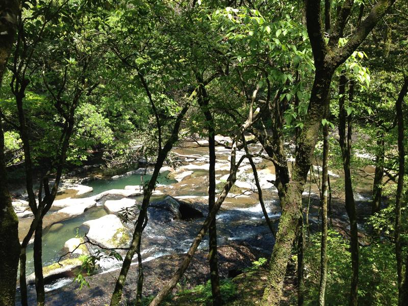 清流の森-大川原峡キャンプ場