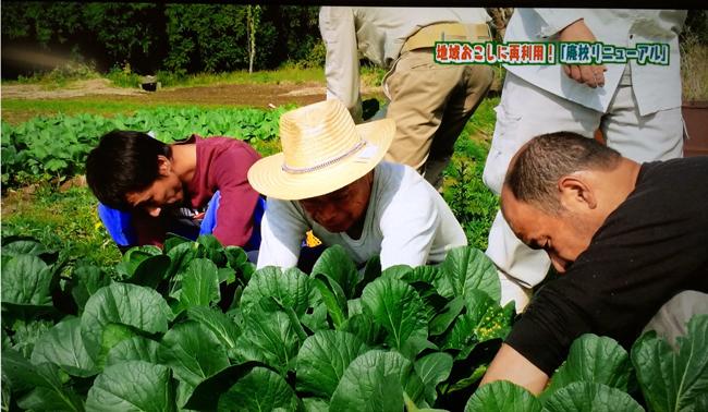 農業職業訓練風景