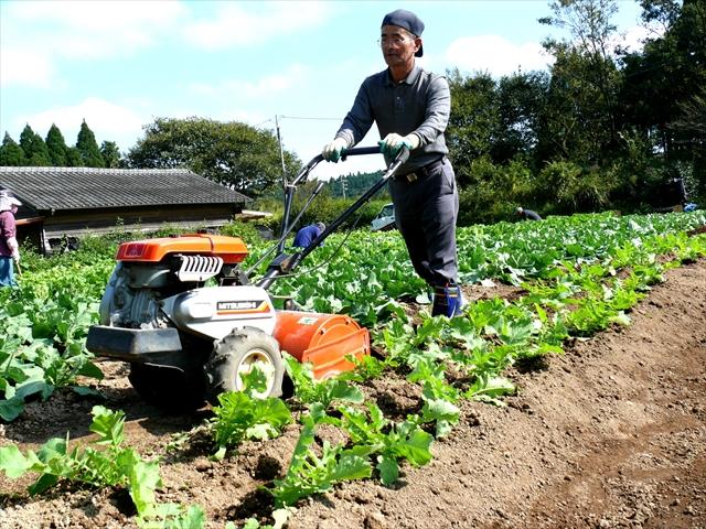 耕運機での作業
