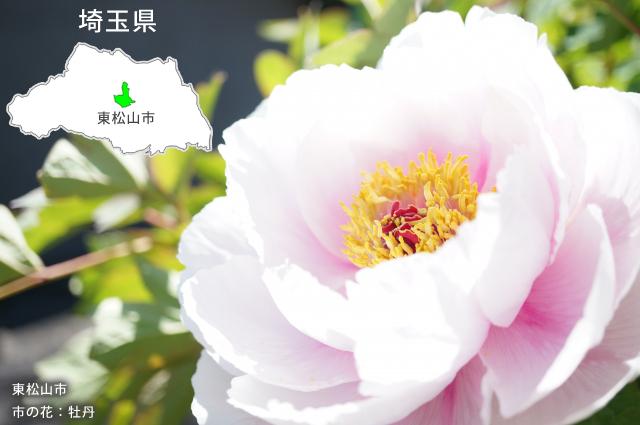 東松山市について
