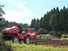 農業人材育成科20170713-3