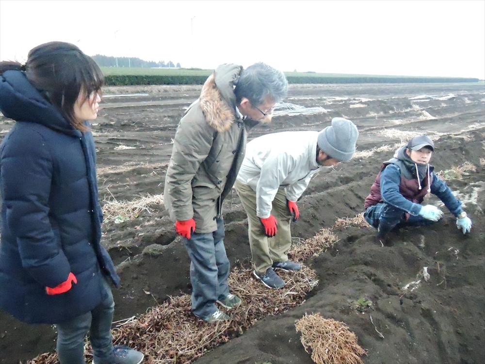 自然薯畑で質問している画像