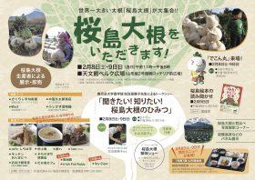 桜島大根をいただきます!たか森カフェ鹿児島市に初!出店します