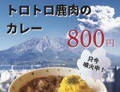 ゴロゴロ桜島大根とトロトロ鹿肉のカレー